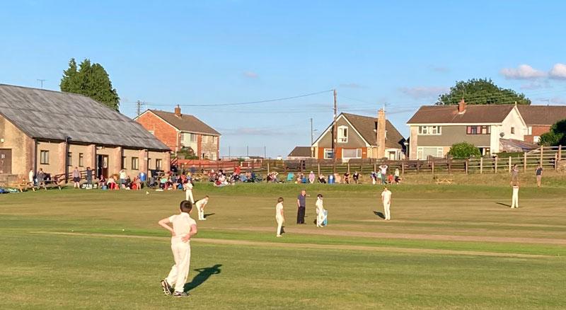 Bream Junior Cricket team vs Newnham
